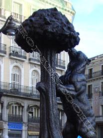 Oso y Madroño, madrid