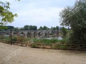 Puente Romano sobre el Pisuerga, Simancas